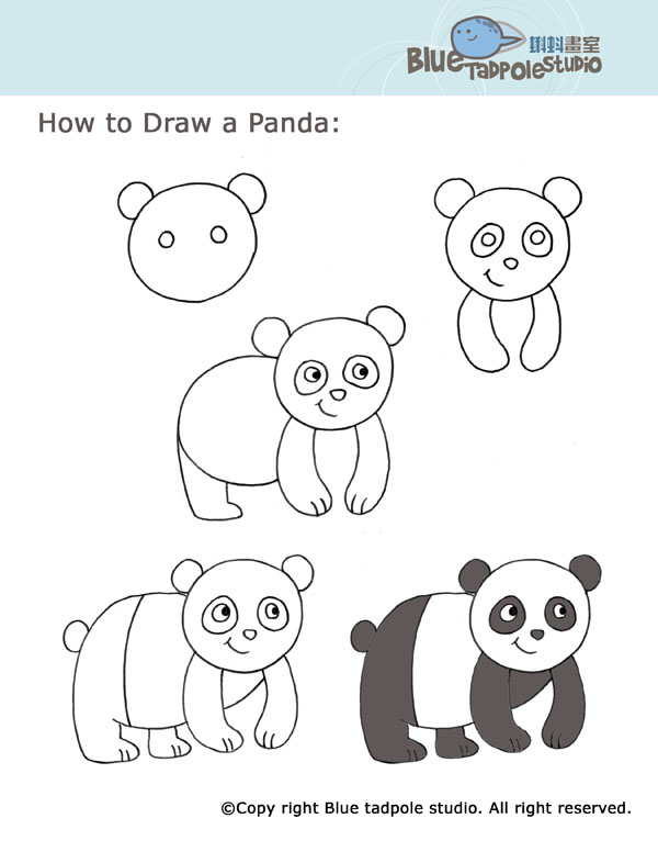 panda drawing step by step - photo #9